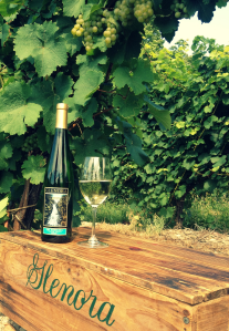 GWC 2013 Dry Riesling