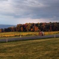 Fall Foliage at Glenora